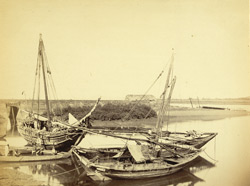 Native boats at Tannah [Thane].